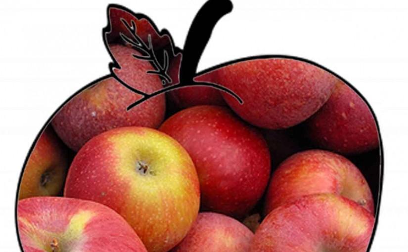 Яблоки продлевают жизнь