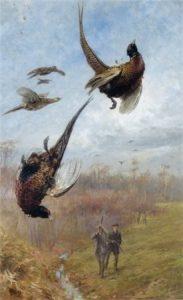 Охота на фазанов.